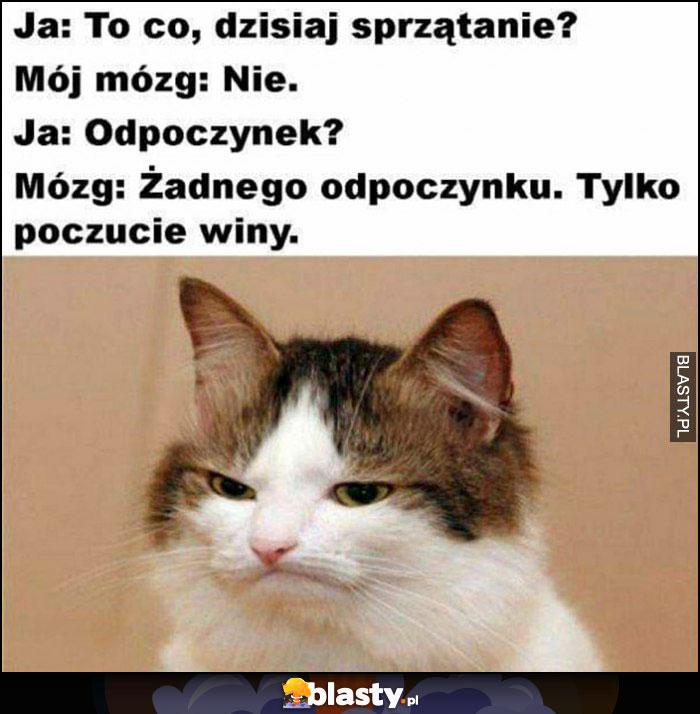 Ja: to co dziś sprzątanie? Mózg: nie, ja: odpoczynek? Mózg: tylko poczucie winy kot