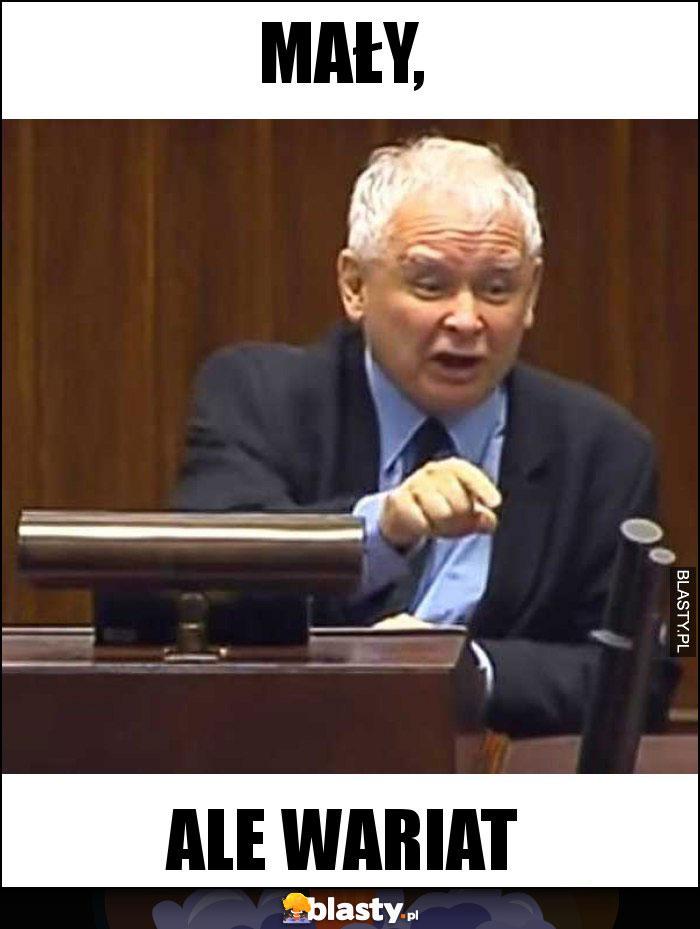 Kaczyński mały ale wariat