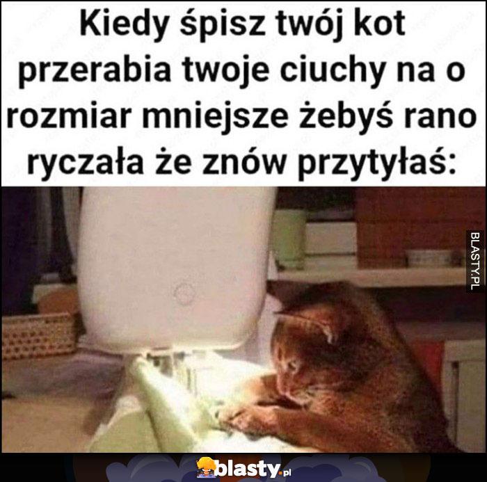 Kiedy śpisz twój kot przerabia twoje ciuchy na rozmiar mniejsze, żebyś rano ryczała, że znów przytyłaś