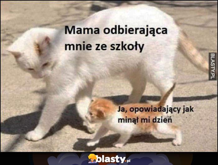 Mama odbierająca mnie ze szkoły, ja opowiadający jak minął mi dzień kot kotek koty
