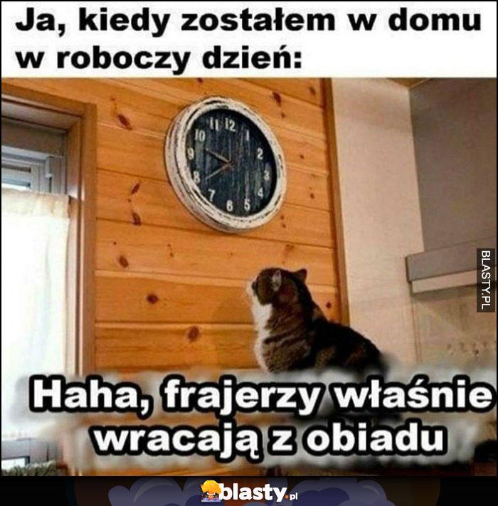 Kot, ja, kiedy zostałem w domu w dzień roboczy. Patrzy na zegarek, haha frajerzy właśnie wracają z obiadu