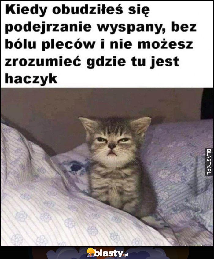 Kot kiedy obudziłeś się podejrzanie wyspany, bez bólu pleców i nie możesz zrozumieć gdzie jest haczyk