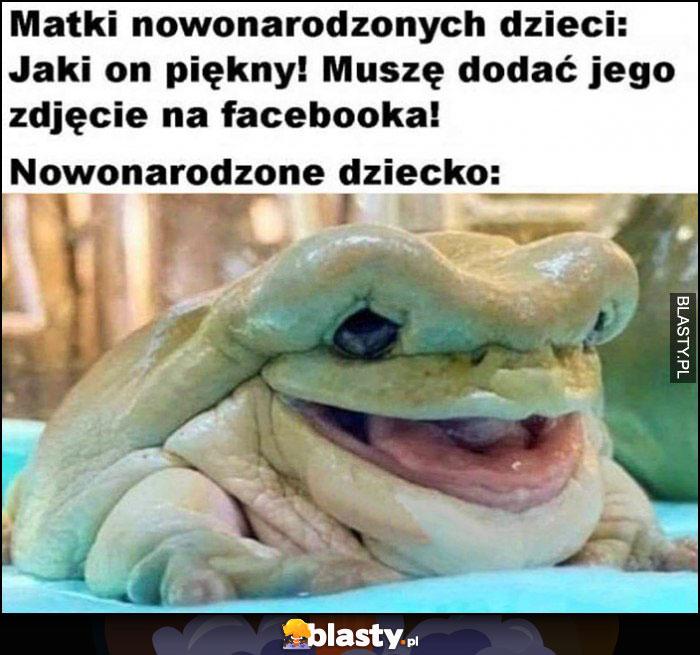 Matki nowonarodzonych dzieci: jaki on piękny! Muszę dodać jego zdjęcie na facebooka, nowonarodzone dziecko: brzydka żaba