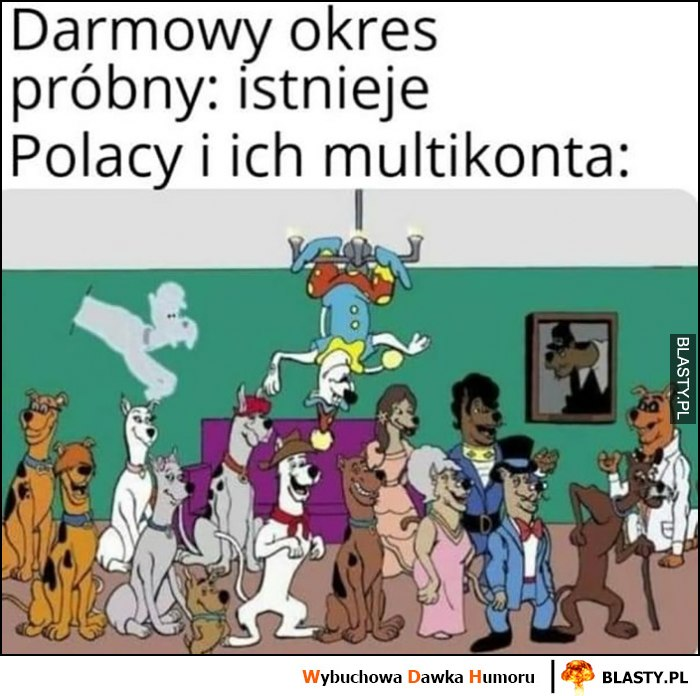 Darmowy okres próbny istnieje, Polacy i ich multikonta
