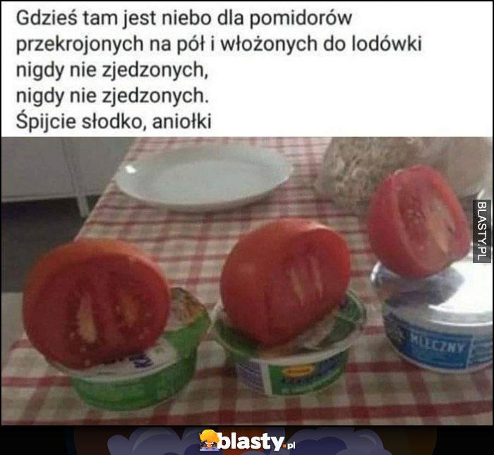 Gdzieś tam jest niebo dla pomidorów przekrojonych na pół i włożonych do lodówki, nigdy nie zjedzonych