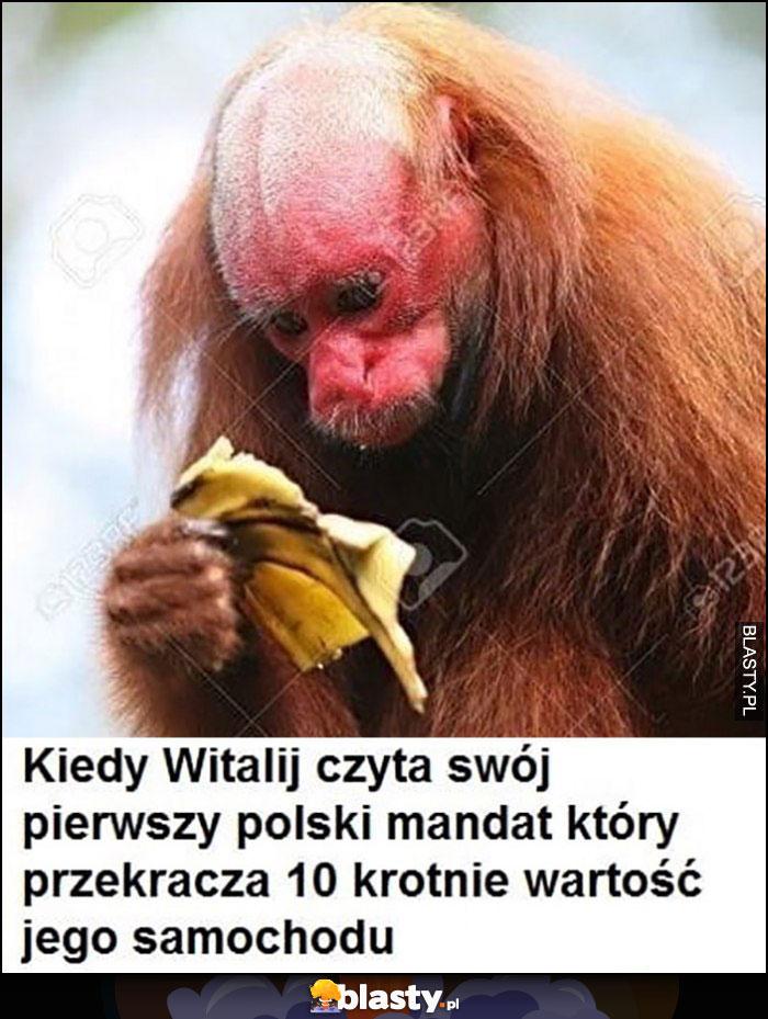 Kiedy Witalij czyta swój pierwszy polski mandat, który przekracza 10-krotnie wartość jego samochodu małpa banan