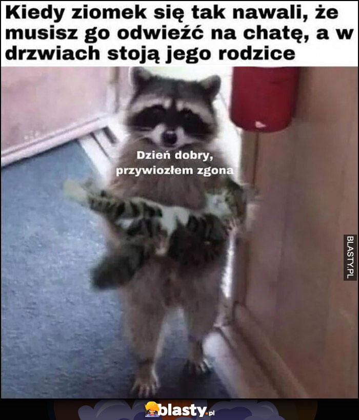 Kiedy ziomek się tak nawali, ze musisz go odwieźć na chatę a w drzwiach stoją jego rodzice, dzień dobry przywiozłem zgona szop pracz z kotem