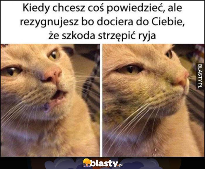 Kot kiedy chcesz coś powiedzieć, ale rezygnujesz bo dociera do Ciebie, że szkoda strzępić ryja