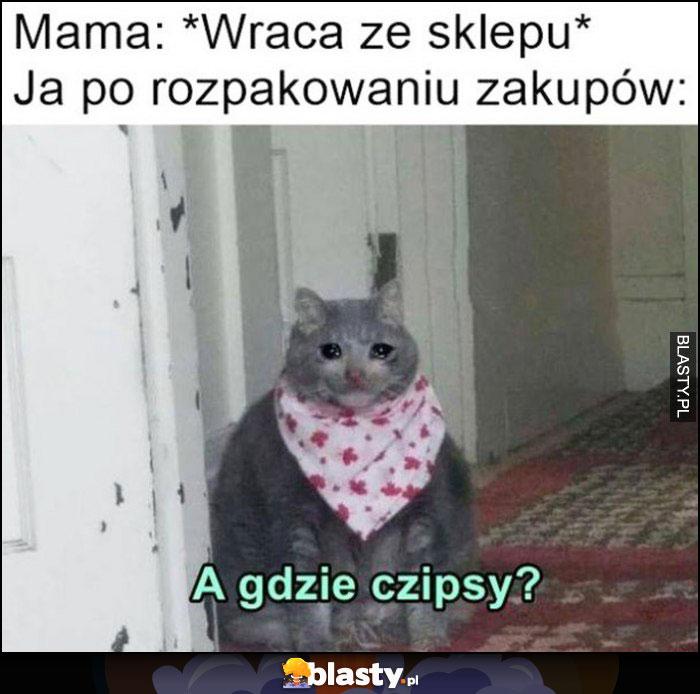 Mama wraca ze sklepu, ja po rozpakowaniu zakupów: a gdzie czipsy? Smutny kot