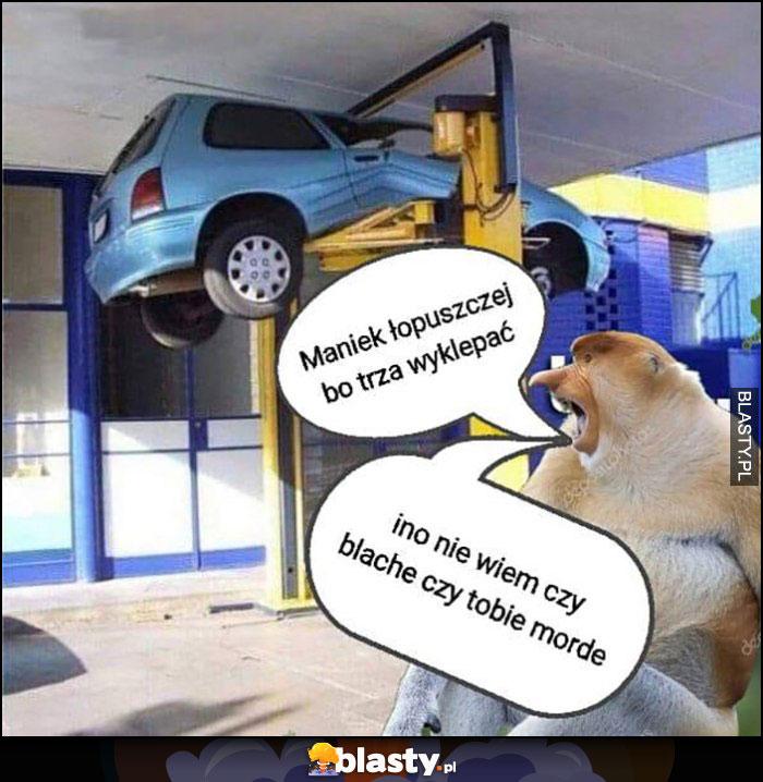 Maniek opuszczaj bo trzeba wyklepać ino nie wiem czy blachę czy tobie mordę auto na podnosniku w warsztacie typowy Polak nosacz małpa