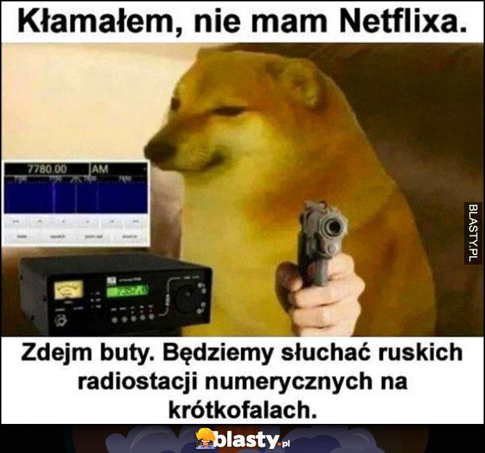 Pieseł doge kłamałem, nie mam Netflixa, zdejm buty, będziemy słuchać ruskich radiostacji numerycznych na krótkofalach