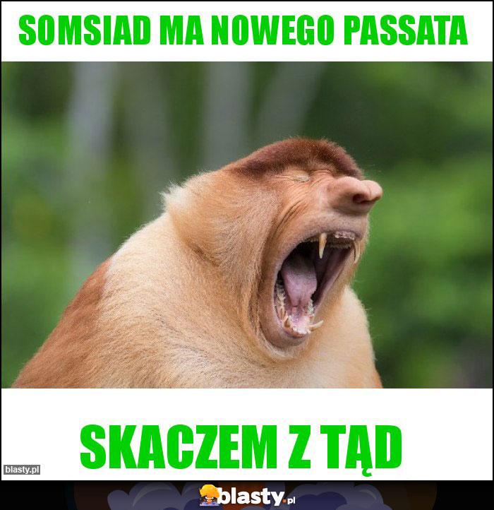 Somsiad ma nowego passata