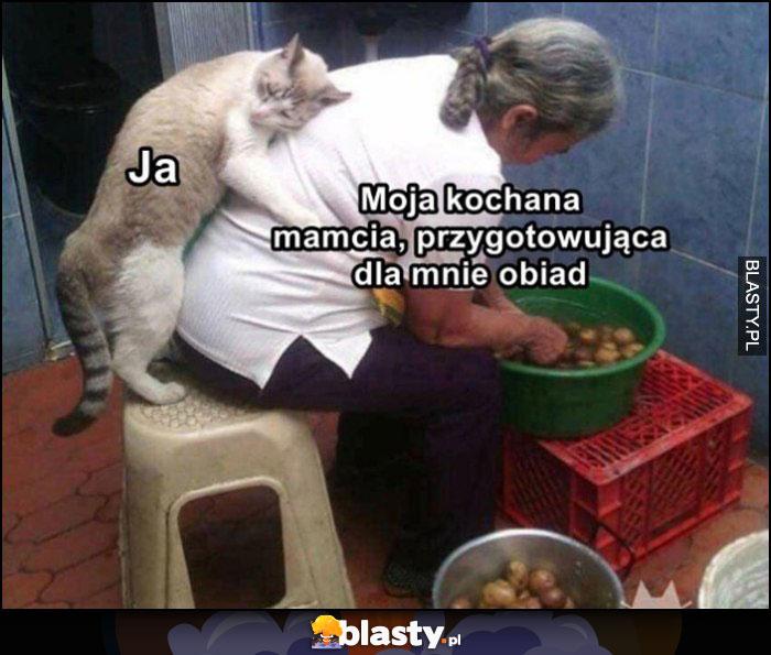 Ja, moja kochana mamcia przygotowująca dla mnie obiad kot tuli się przytula