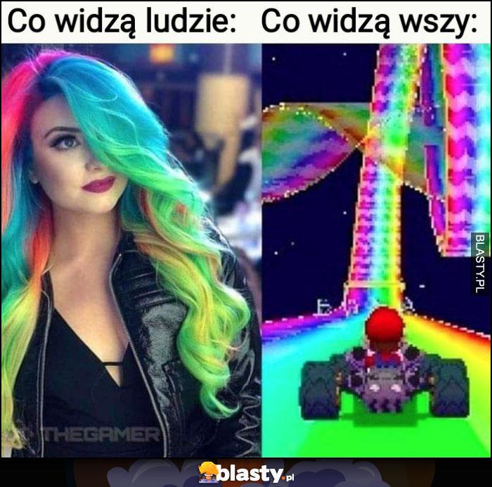 Kolorowe włosy: co widzą ludzie vs co widzą wszy porównanie screen z gry