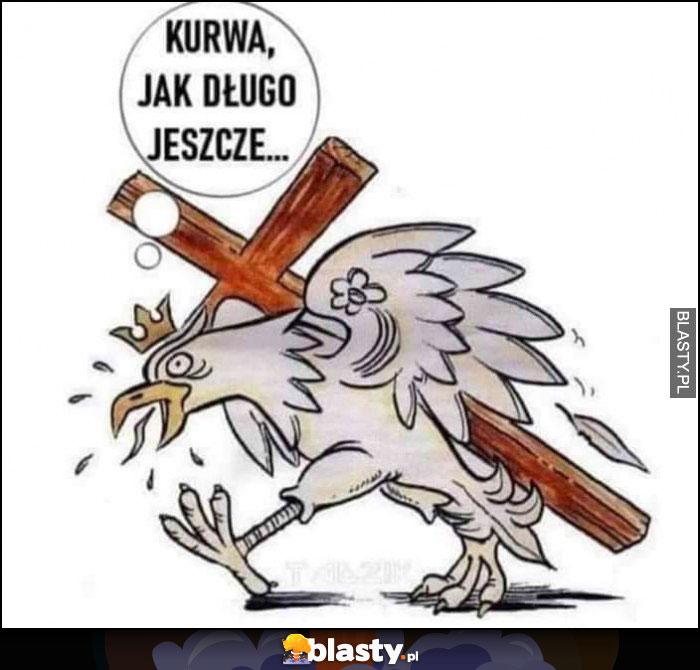 Kurna jak długo jeszcze orzełek polska niesie krzyż na plecach