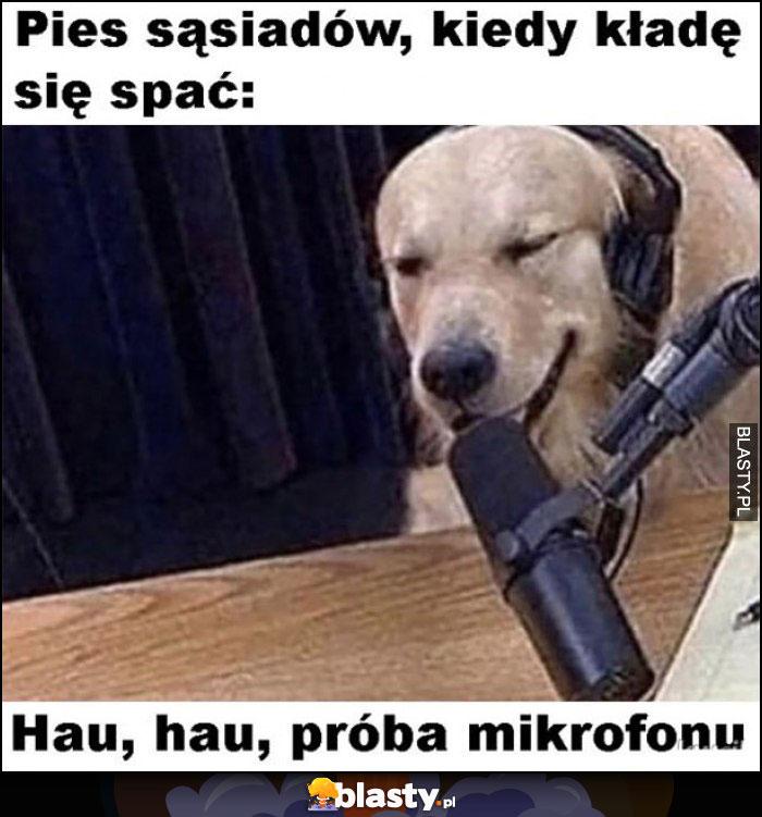 Pies sąsiadów kiedy kładę się spać hau hau próba mikrofonu