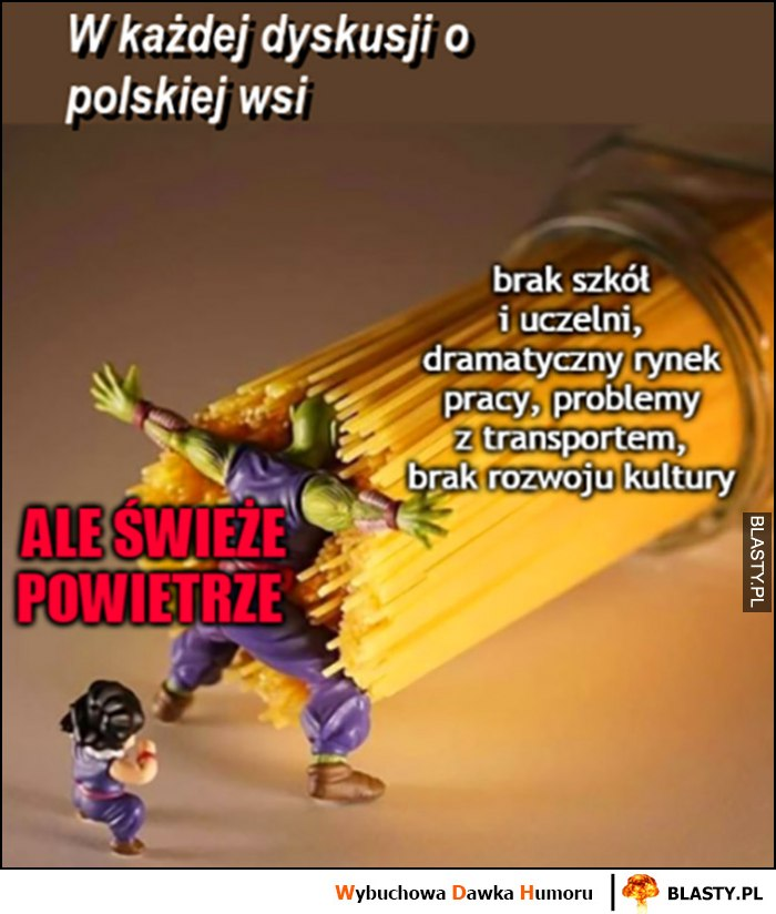 W każdej dyskusji o polskiej wsi, brak wszystkiego i same problemy ale jest świeże powietrze makaron