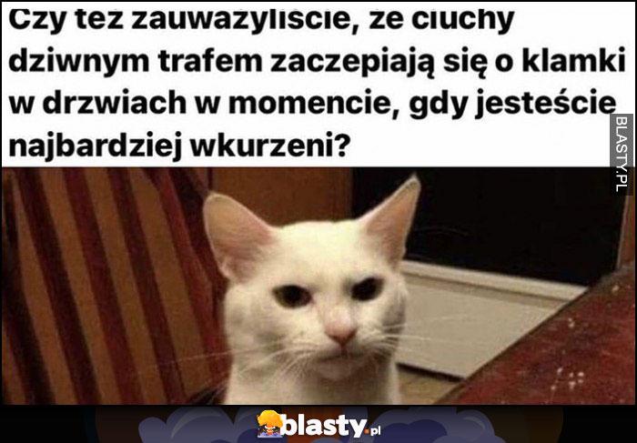 Zauważyliście że ciuchy dziwnym trafem zaczepiają się o klamki w momencie gdy jesteście najbardziej wkurzeni? kot