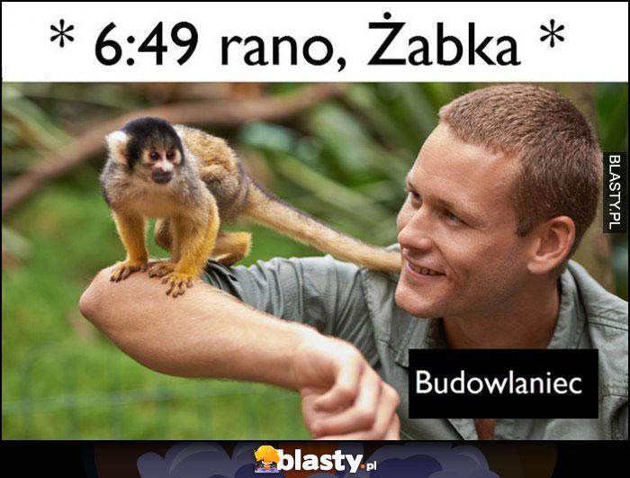 Budowlaniec w żabce rano: małpa małpka