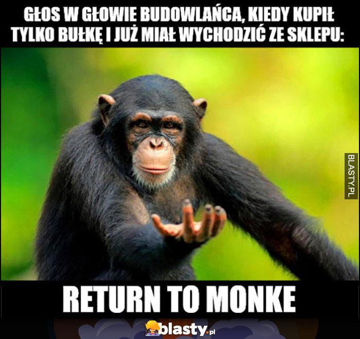 Głos w głowie budowlańca, kiedy kupił tylko bułkę i wychodzi ze sklepu: return to monke małpka