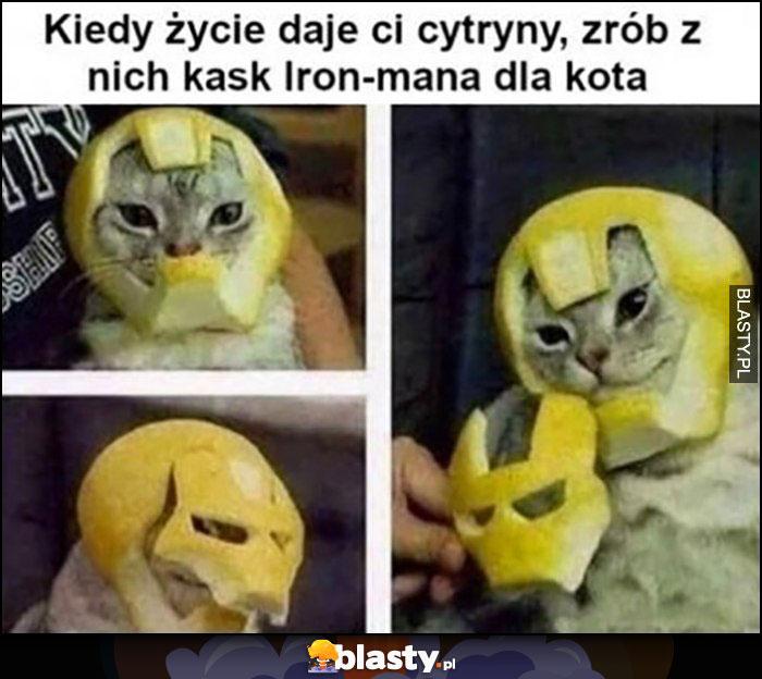 Kiedy życie daje ci cytryny zrób z nich kask Iron-mana dla kota