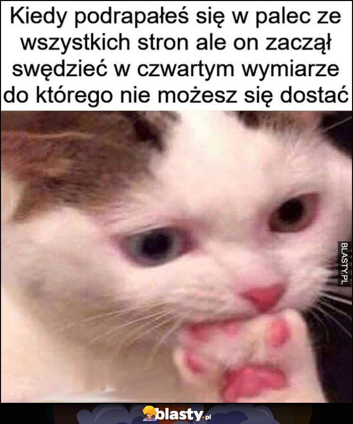 Kot kiedy podrapałeś się w palec ze wszystkich stron ale on zaczał swędzieć w czwartym wymiarze do którego nie możesz się dostać gryzie łapę