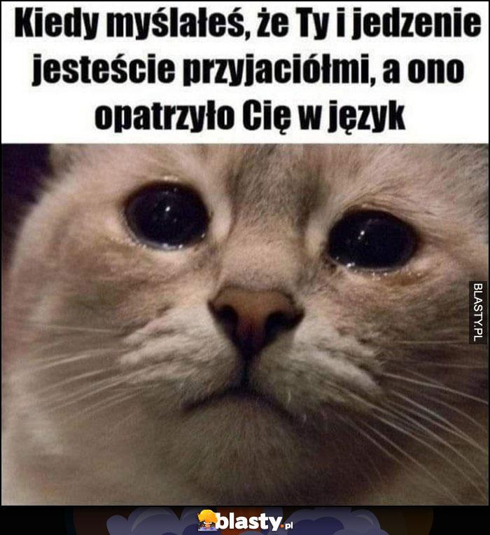 Kot kotek smutny płacze kiedy myślałeś, że Ty i jedzenie jesteście przyjaciółki, a ono oparzyło Cię w język