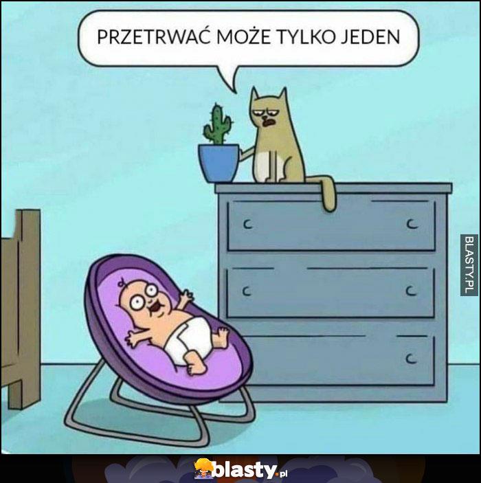Kot niemowlak dziecko przetrwać może tylko jeden