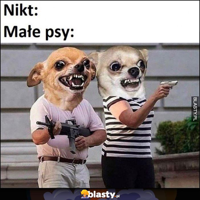 Nikt, małe psy: złe wściekłe szczekają