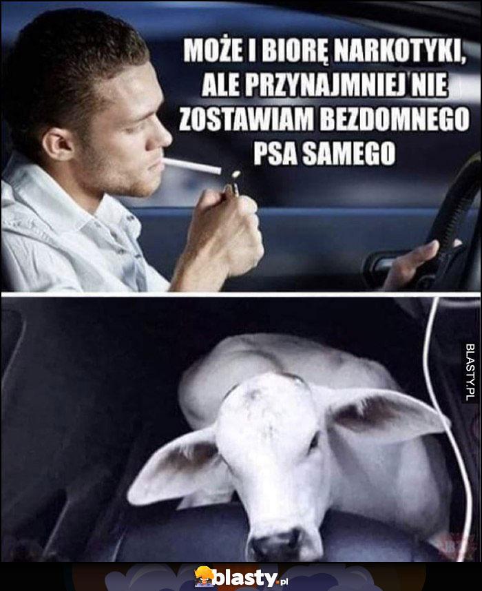 Może i biorę narkotyki ale przynajmniej nie zostawiam bezdomnego psa samego tak naprawdę to krowa