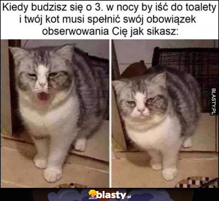 Kiedy budzisz się o 3 w nocy by iść do toalety i Twój kot musi spełnić swój obowiązek obserwowania Cię jak sikasz zaspany