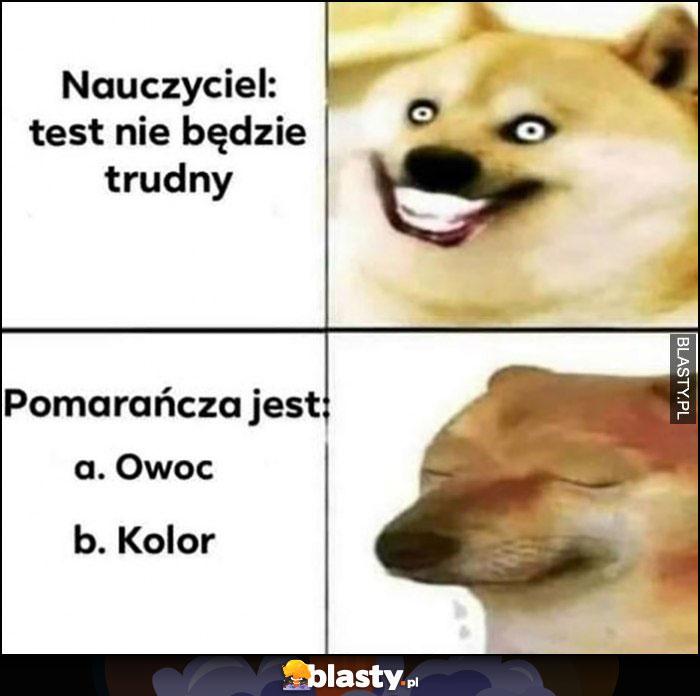 Nauczyciel: test nie będzie trudny, a na teście: pomoarańcza to owoc czy kolor pies pieseł doge