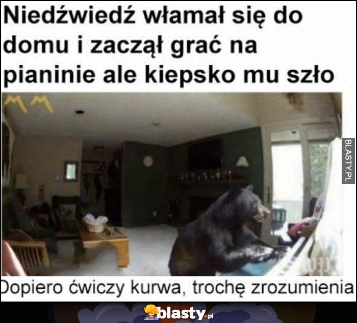Niedźwiedź włamał się do domu i zaczął grać na pianinie, ale kiepsko mu szło, dopiero ćwiczy, trochę zrozumienia