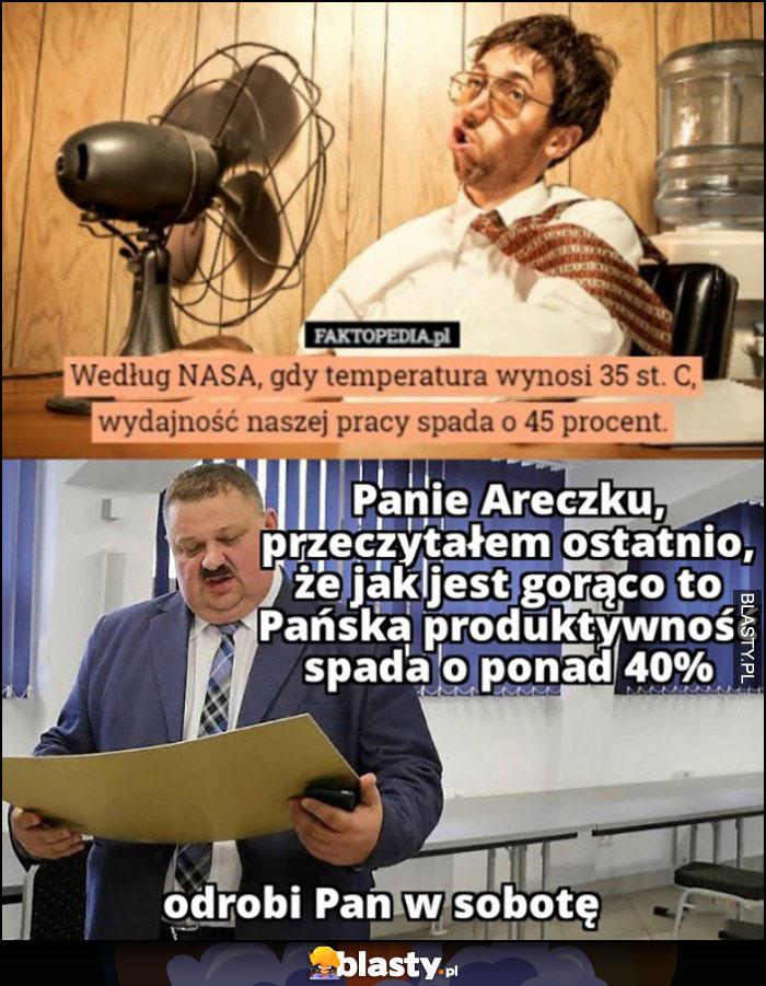 Gdy temperatura wynosi 35 stopni wydajność pracy spada o 45 procent, Panie Areczku odrobi Pan w sobotę Janusz Alfa