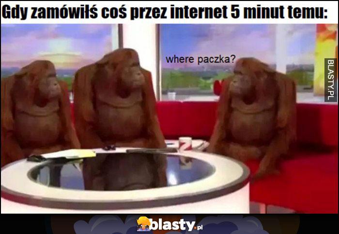 Gdy zamówiłeś coś przez internet 5 minut temu, where paczka małpy szympansy