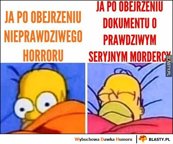 Ja po oberzeniu nieprawdziwego horroru vs ja po obejrzeniu dokumentu o prawdziwym seryjnym mordercy porównanie Homer Simpson