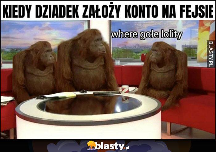 Kiedy dziadek założy konto na fejsie małpy goryle szympansy where gołe lolity
