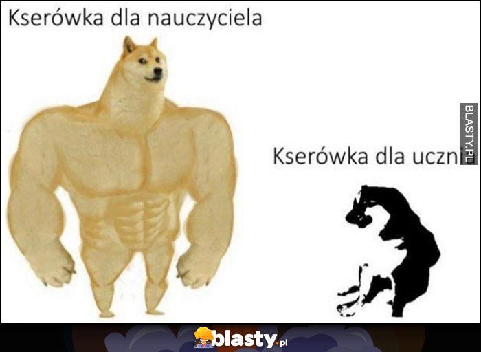 Kserówka dla nauczyciela vs xero dla ucznia pies pieseł doge