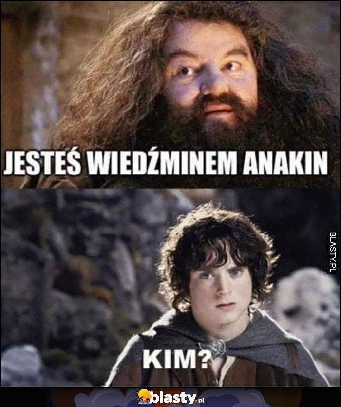 Harry Potter jesteś wiedźminem Anakin, Frodo: kim?