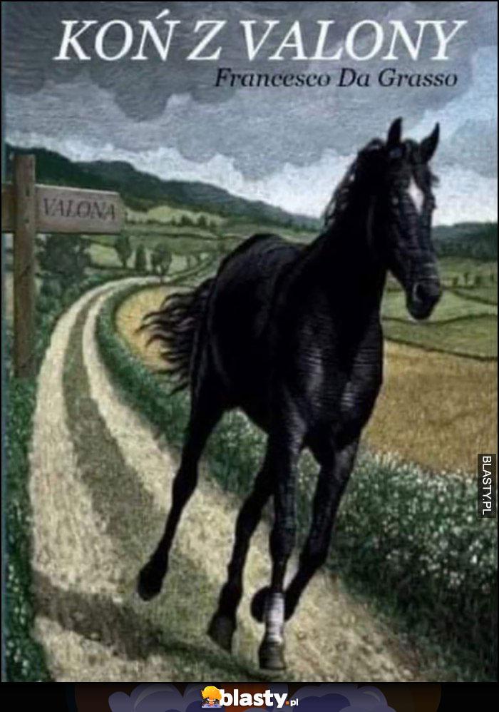 Koń z Valony książka okładka zwalony