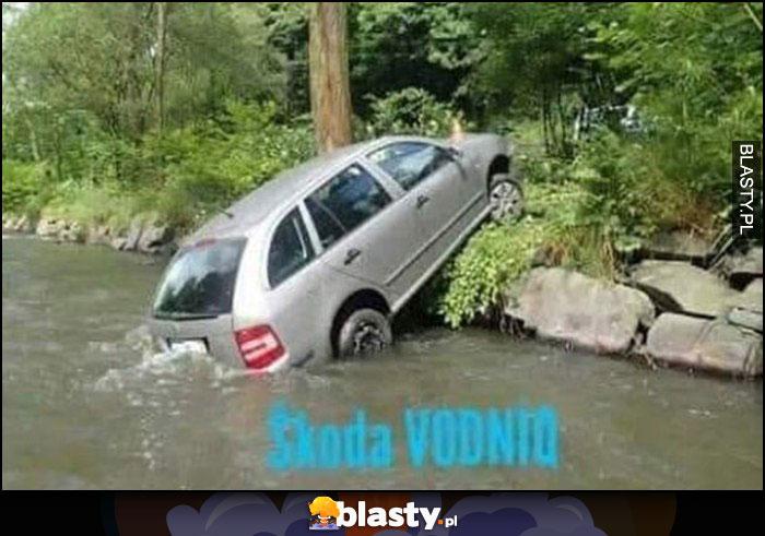 Skoda Vodnik wodnik wpadła do rzeki