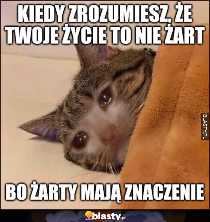 Smutny kot kiedy zrozumiesz, że Twoje życie to nie żart bo żarty mają znaczenie płacze