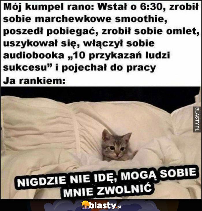 Mój kumpel rano vs ja rano: nigdzie nie idę, mogą sobie mnie zwolnić kot kotek
