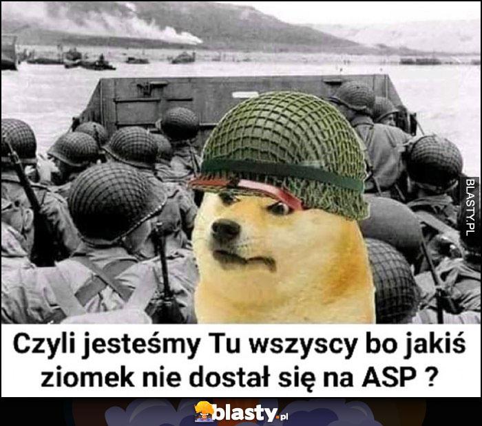 Pies pieseł doge wojna czyli jesteśmy tu wszyscy bo jakiś ziomek nie dostał się na ASP?