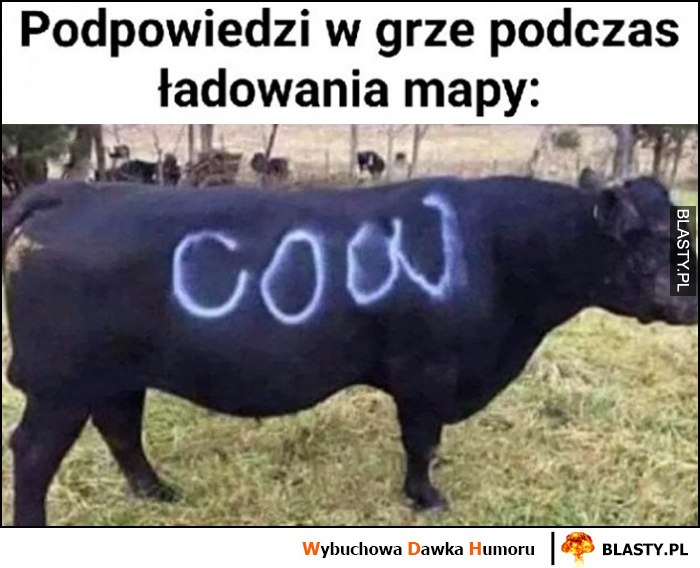 Podpowiedzi w grze podczas ładowania mapy to jest krowa cow