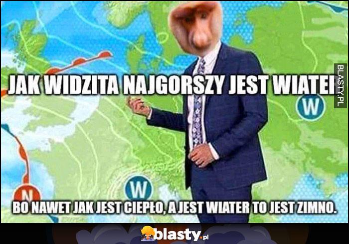 Jak widzita najgorszy jest wiater, bo nawet jak jest ciepło a jest wiater to jest zimno Polak nosacz prognoza pogody