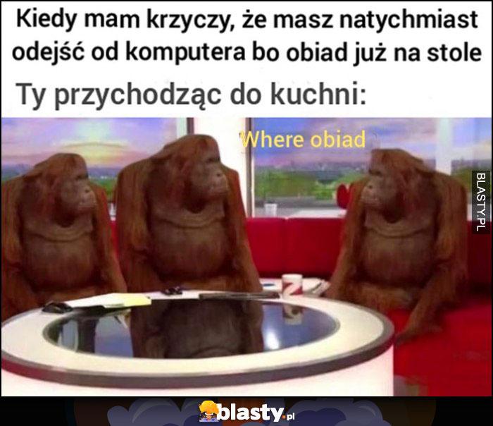 Kiedy mama krzyczy że masz natychmiast odejść od komputera bo obiad już na stole, ty przychodząc do kuchni: where obiad małpy szympansy