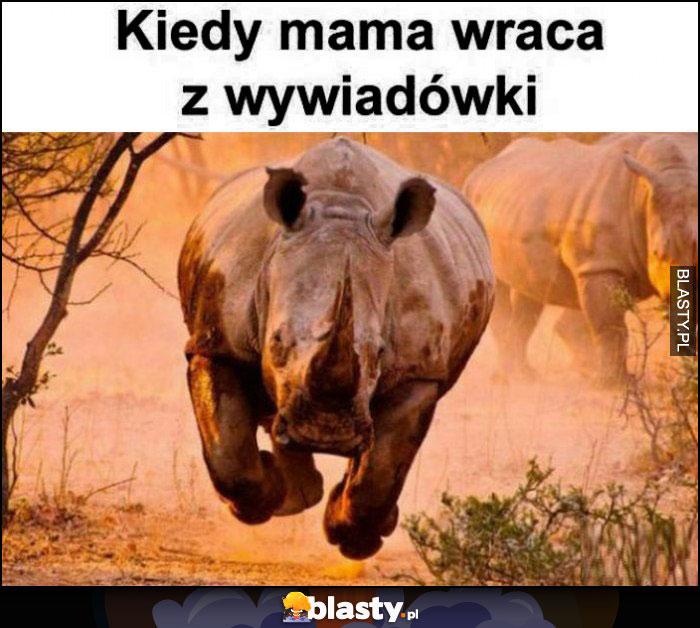 Kiedy mama wraca z wywiadówki rozpędzony nosorożec