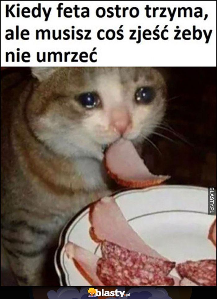 Kot kotek płacze kiedy feta ostro trzyma ale musisz coś zjeść żeby nie umrzeć
