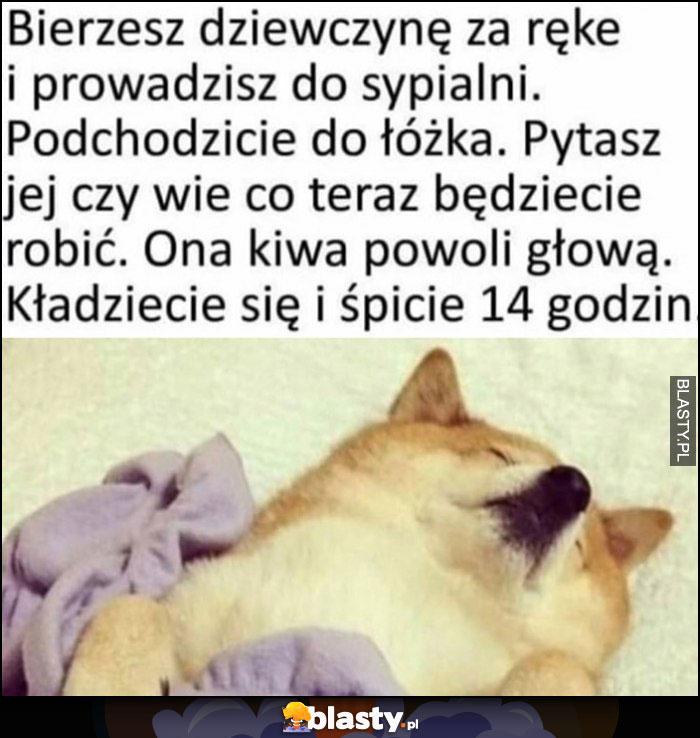 Pies pieseł bierzesz dziewczynę za rękę, prowadzisz do sypialni, podchodzicie do łóżka, pytacz czy wie co teraz będziecie robić, powoli kiwa głową, kładziecie się i śpicie 14 godzin